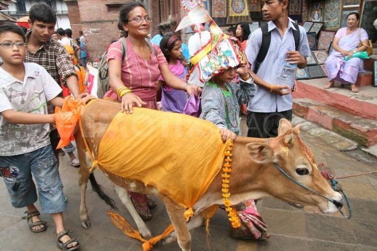Gai Jatra Kathmandu